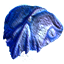 Carapace blue.png